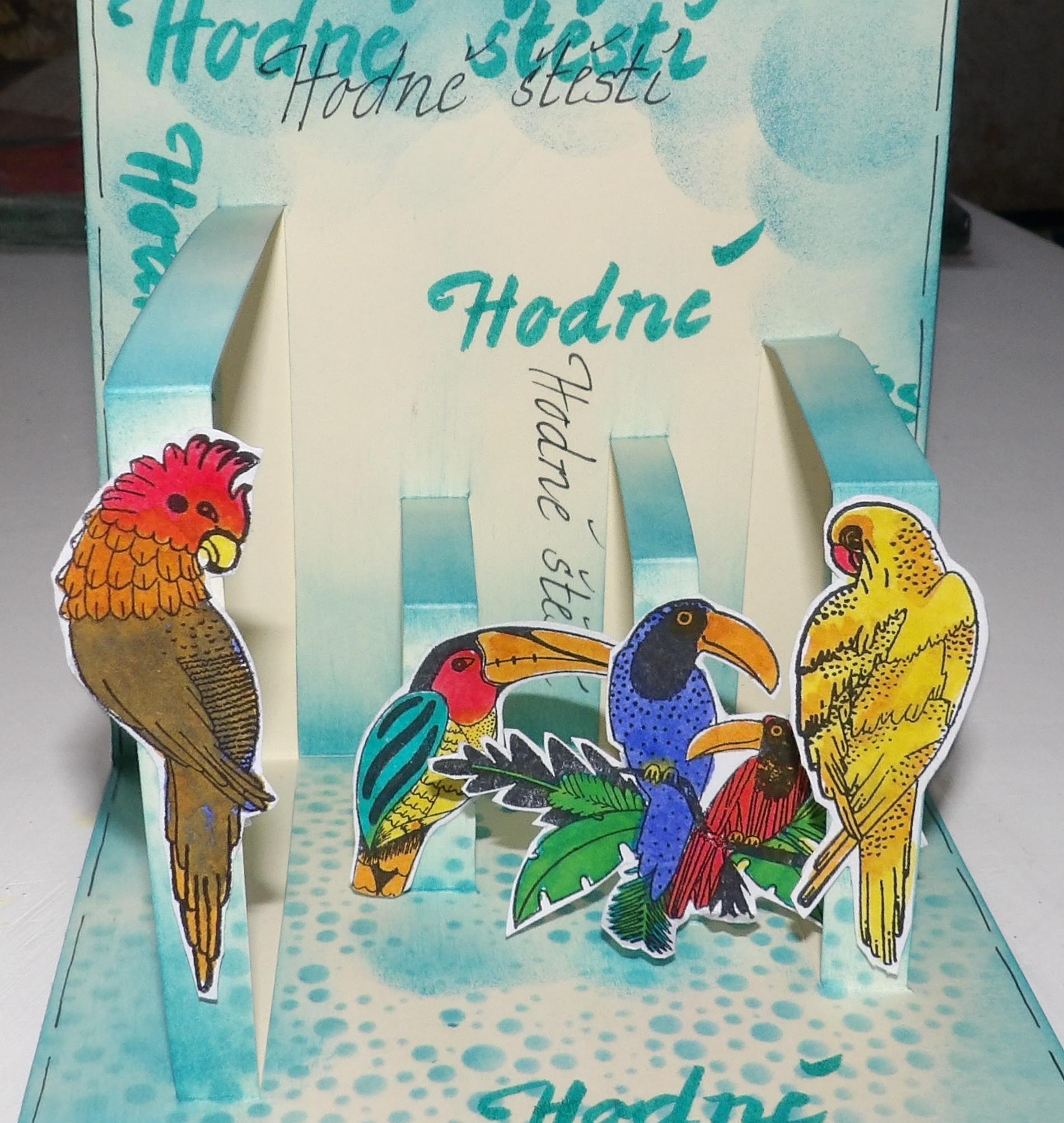 Papoušci 3 D přání