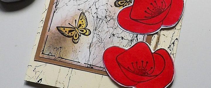 Mramoroví motýlci